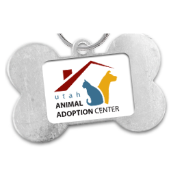 Daybreak Animal Shelter